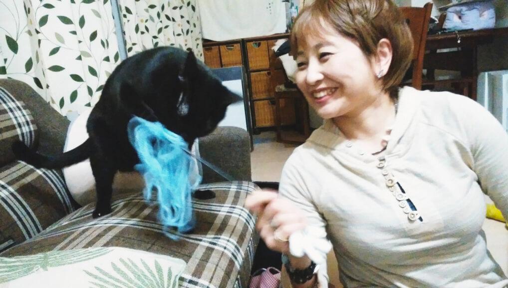 ねこべや横浜鶴見店シッター